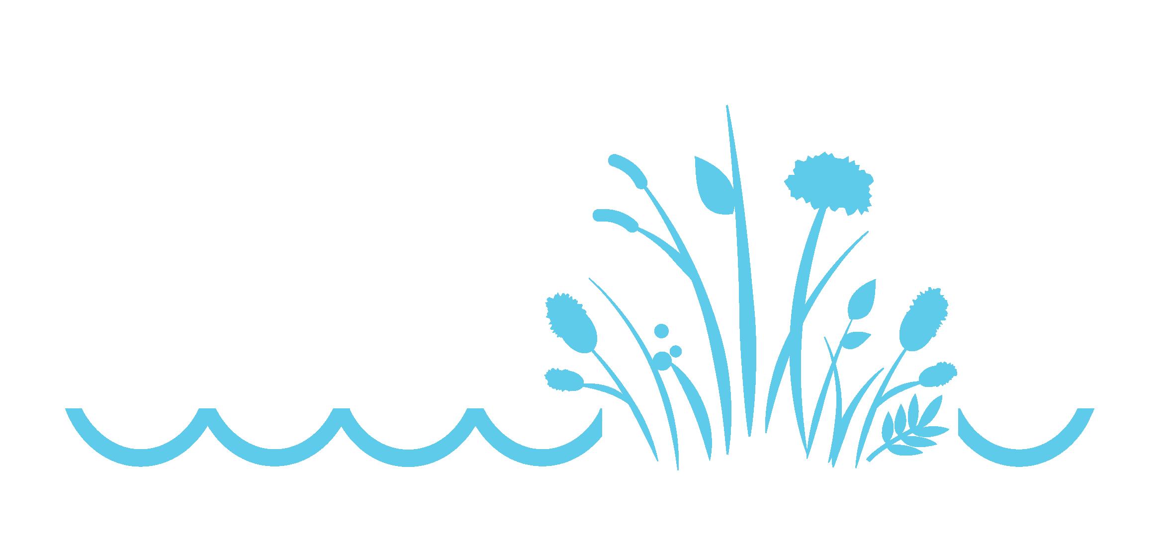 Logo strony łąka warszawska